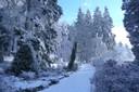 Park zimní foto